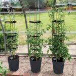 Självvattnande kruka med växtstöd