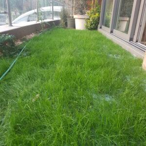 Turfquick gräsmatta på rulle