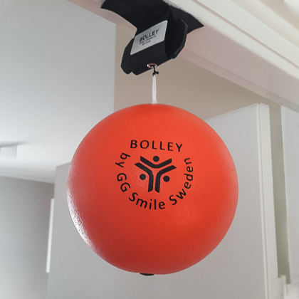 Träningsbollen Bolley