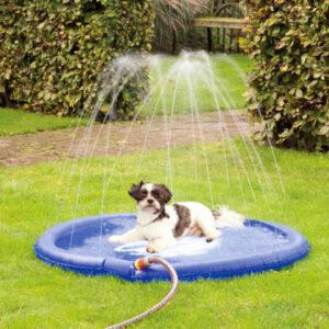 Sprinklermatta till hunden